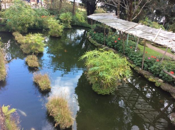 7508354-Garden_Royal_Palace_Phuping_Chiang_Mai_Chiang_Mai