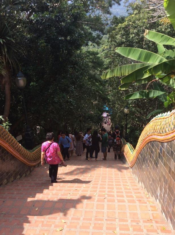 7508369-Steps_Wat_Phra_That_Doi_Suthep_Chiang_Mai_Chiang_Mai