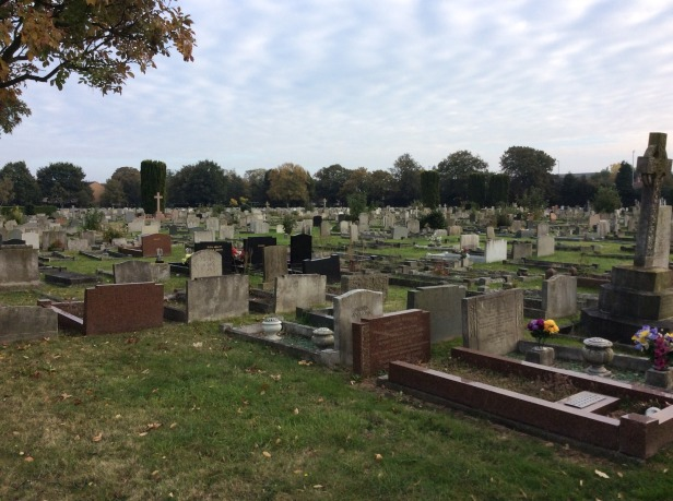7716543-Cambridge_City_Cemetery_Cambridge